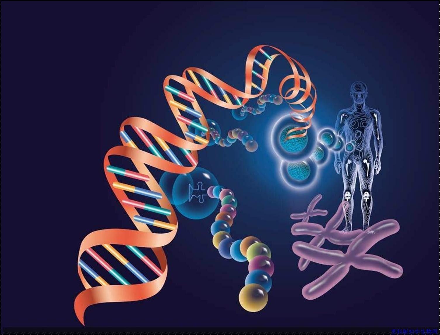 遗传病相关药物开发