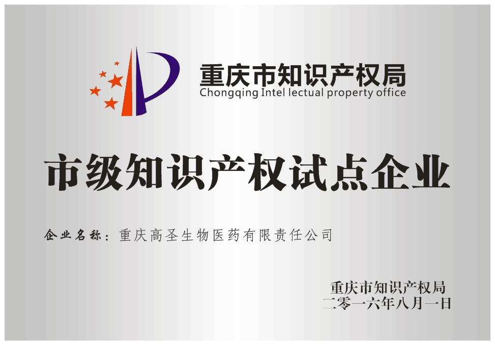 5 重庆市知识产权试点企业.png